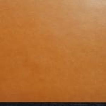 Elite board; varnished; light brown; 0.5mm; 375x500mm(PU 5pcs.)